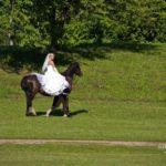 zirgs kāzās