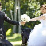 Izjāde ar zirgiem kāzās