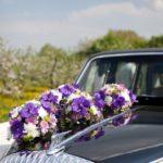 kāzu floristika, kāzu auto