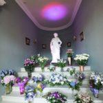 kāzu ziedi, Mežotnes pils