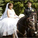 jaunais pāris ar zirgiem kāzās, zirgi fotosesijā kāzās