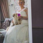 suns kāzās, čivauva kāzās