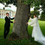 Mežotnes pils parks kāzas