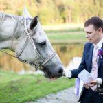 zirgu fotosesija kāzās
