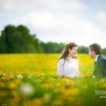 kāzu fotosesija, dzeltena pļava kāzām, Edgars Pohevičs
