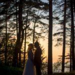 kāzu romantika, priežu mežs kāzu fotosesija