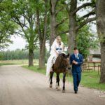 zirgs kāzās, kāzu izjāde