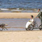 suņi kāzās pie jūras, Kāzu Aģentūra
