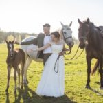 kāzās zirgi, kāzu izjāde, Kāzu Aģentūra