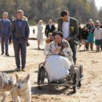 suņu pajūgs kāzās, kāzas pie jūras, Kāzu Aģentūra