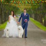 suņi kāzās, Ingrida Bridal, balti suņi kāzās, Kāzu Aģentūra, milestiba.lv