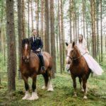 kāzu fotosesija, zirgi kāzās